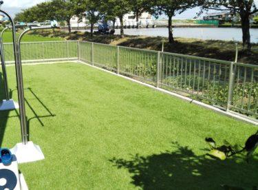 人工芝の6つのメリット実体験から教えます